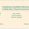 Visualizing Competitive Behaviors in Multi-User Virtual Environments