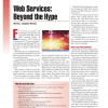 Web Services: Beyond the Hype
