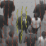 A Streakline Representation of Flow in Crowded Scenes